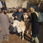 Picture fieldwork Afghanistan