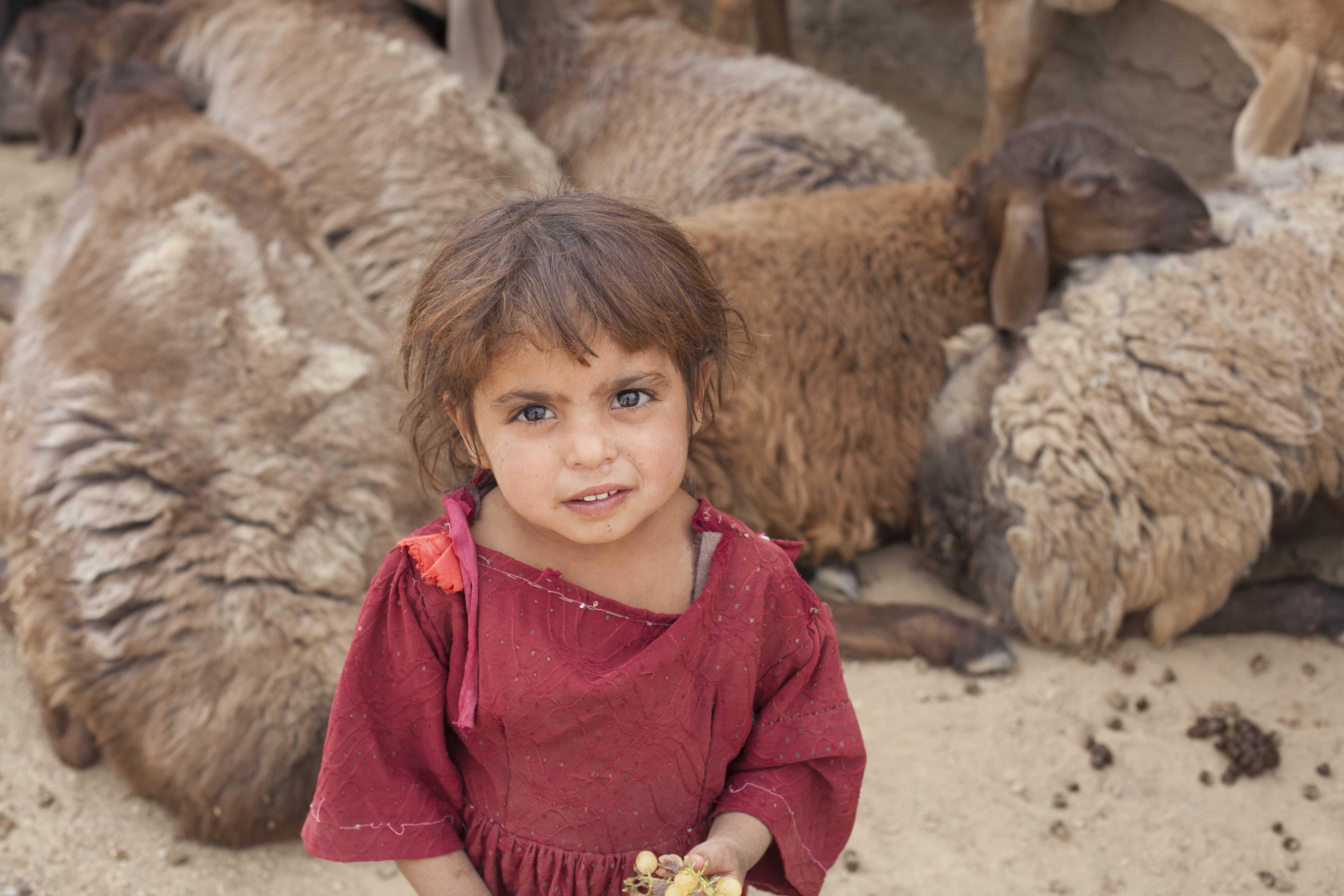 Fieldwork Afghanistan