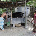 Fieldwork Bangladesh