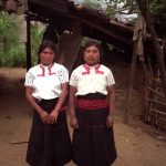 Research ethnoveterinary practices Tzotzil Indians in Chiapas, Mexico
