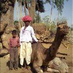 Raika boys posing next to camel